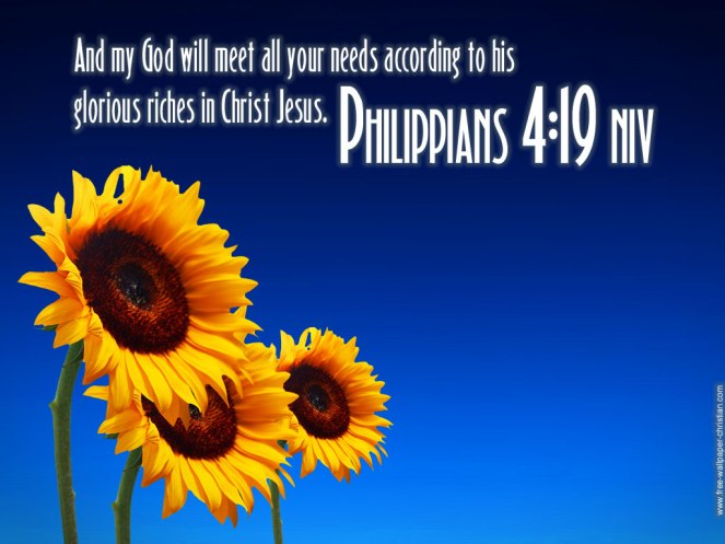 philippians-4-19-scripture-flower-hd-wallpaper